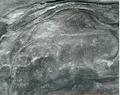 Aboriginal hand stencils, Yeramba Lagoon area Picnic Point (19381414779).png