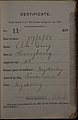 Ah Guy Auckland Chinese poll tax certificate butts Certificate issued at Auckland.jpg