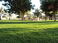 Al Azrah Park, Sharjah - panoramio (1).jpg