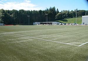 Lennoxtown training centre - Image: Alanmaguirelennoxtow n 13