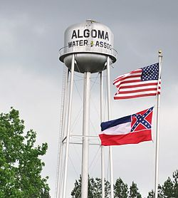 The Algoma water tower in Algoma, Mississippi. Photo by Michael Jones.