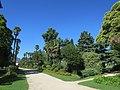 Allée, jardin Massey, Tarbes.jpg