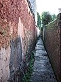 Alley behind East Grove Road, Exeter - geograph.org.uk - 319588.jpg