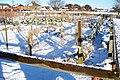 Allotments under snow at Longframlington - geograph.org.uk - 1629650.jpg