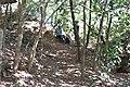 Alto Araguaia - State of Mato Grosso, Brazil - panoramio (257).jpg