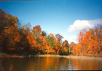 Alum Creek State Park - Alum Creek State Park in autumn