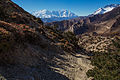 Annapurna I, Tilicho and Nilgiri in the backdrop (15870226265).jpg