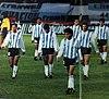 Argentina retirada campo.jpg