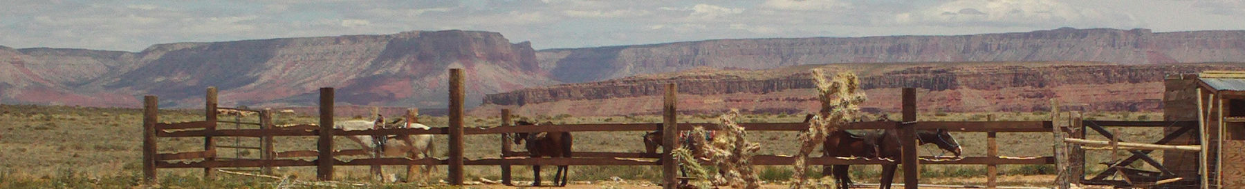 Arizona banner Grand Canyon.jpg