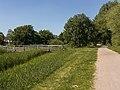 Arnhem De Laar oost, houten brug in het Jublieumpark foto7 2015-06-30 16.14.jpg