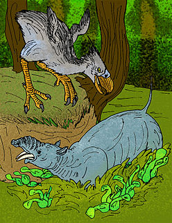 Astrapotheriidae family of mammals (fossil)