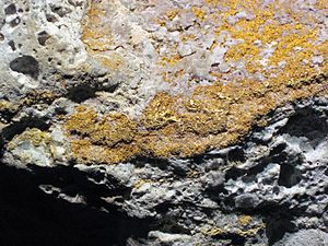 Summitville mine - Image: Auriferous volcanic breccia (Little Annie Mine, Summitville Mining District, San Juan Mountains, Colorado, USA) 4 (16422301144)