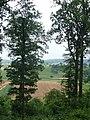 Ausblick Richtung Altdorf und Hildrizhausen - panoramio.jpg