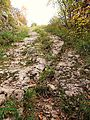 Autre vue du chemin antique ornièré. appelé voie Romaine.jpg