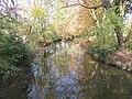 Autumn Branch of Isar River Garching.jpg