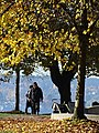 Autumn Scene in Stanley Park - Vancouver - BC - Canada - 01 (37973663831) (2).jpg