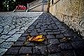 Autumn in Adile Sultan Kiosk - panoramio.jpg