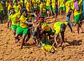 Avaniyapuram Jallikattu game.jpg