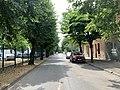 Avenue Branly (Saint-Maurice-de-Beynost) en juillet 2019.jpg
