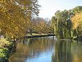 Avon River, 2008.jpg