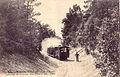 BR 3193 - Le BUREAU-St-PALAIS - Cote d'Argent - Passage du Tramway dans la Foret.jpg