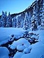 Bach und Wald im Schnee in Preda GR.jpg