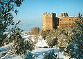 Badia Winter.jpg