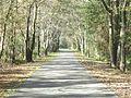 BaldwinRail-Trail.jpg