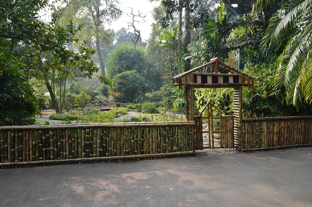 File:Bamboo Fence with Gate - Agri-Horticultural Society ...
