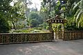 Bamboo Fence with Gate - Agri-Horticultural Society of India - Alipore - Kolkata 2013-01-05 2369.JPG