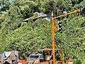 Barnard Road Crossing, Barnard, NC (50527941638).jpg