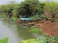 Barranca do Rio Pardo, visto da ponte construída em 1936, que liga as cidades de Viradouro e Morro Agudo. O Rio Pardo sofrendo com a grande seca de 2014, mesmo no início da temporada de chuva. - panoramio.jpg