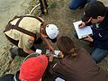 Base biologist partners with Boy Scouts 160416-F-XX999-001.jpg