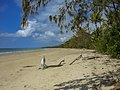 Beach Daintree National Parc - Strand (23134796846).jpg
