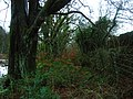 Beith Manse to the Manse Fields, Bieth, North Ayrshire, Scotland.jpg