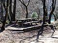 Bellegarde Valserine picnic.jpg