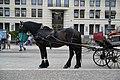 Berlin PICT3784 (6402105289).jpg