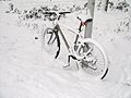 Bicycle in Amsterdam after heavy snow -1.jpg
