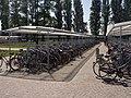 Bicycles at Brugge train station - panoramio.jpg