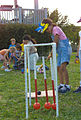 Biscayne National Park V-family fun fest vertebrate open.jpg