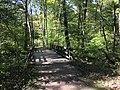Blendon Woods Metro Park October 2018 24.jpg