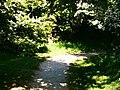 Blossom Corner (enhanced).jpg