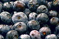 Blueberries 3872x2592.jpg