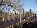 Bluff Dale Suspension Bridge1.JPG