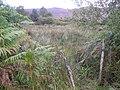 Boihy Townland - geograph.org.uk - 1505862.jpg