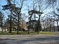 Bois du jardin du Mail.JPG