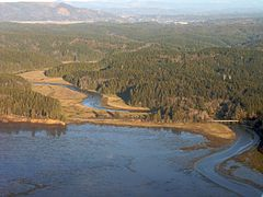Willapa Bay - Bone River flows into Willapa Bay's east side