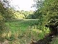 Borderland grazings near Pentre Farm - geograph.org.uk - 249020.jpg