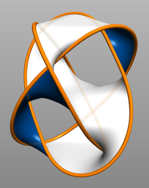 Seifert surface - A Seifert surface bounded by a set of Borromean rings.