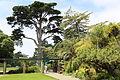 Botanischer Garten San Francisco.JPG